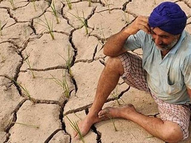 Punjab,Haryana,drought