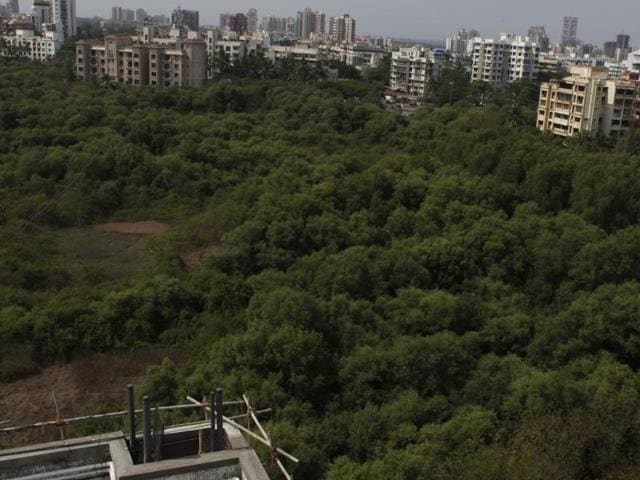 The MMRDA will also have to produce a separate environment management plan to ensure there is no reclamation, there is no adverse impact on mangroves and the activities of local fishermen are not hampered.