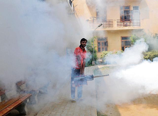 Gurgaon,chikungunya,mosquito disease