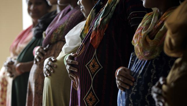 Surrogacy,Bombay high court,Embryos
