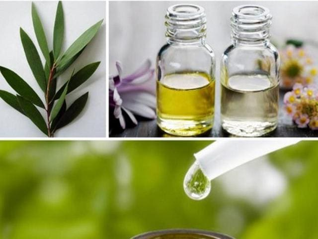 Tea tree oil -- also known as melaleuca oil -- is applied to the skin (used topically) for infections such as acne, fungal infections of the nail (onychomycosis), lice, scabies, athlete's foot (tinea pedis), and ringworm.(Pinterest photos)