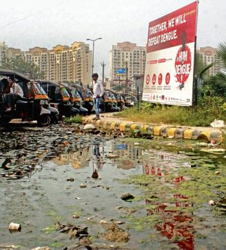 A large signboard with the message, 'Together we will defeat dengue', at Subhash Chowk on Sohna Road stands next to a puddle of stinking sewage.