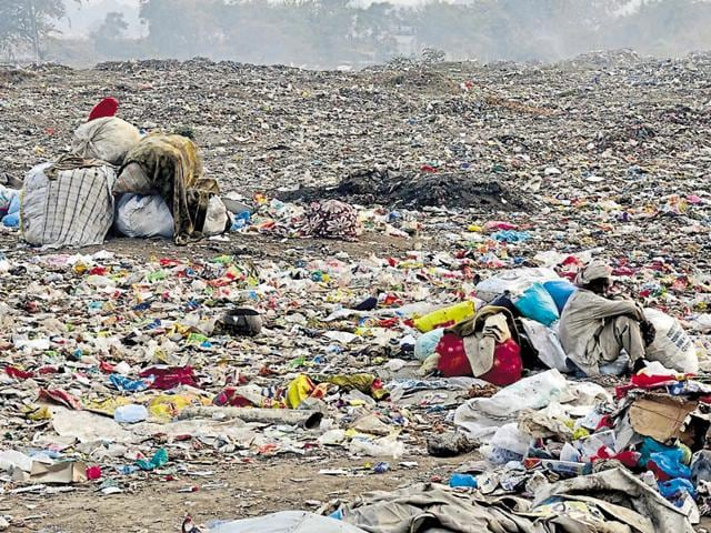 View of the garbage dump near Ghaluri Gate in Patiala on Monday.