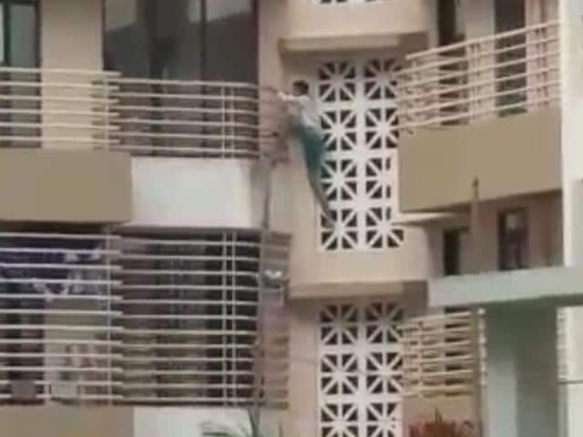 The video of his climbing the building and breaking  the glass with a sword has gone viral.