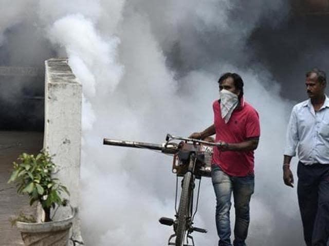dengue,vector-borne diseases,chikungunya