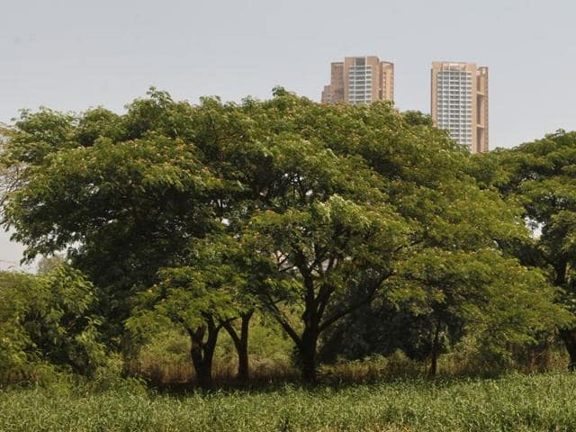 While MMRC officials claim that there is not any viable alternative for the 30-hectare Aarey Colony land, activists said they will not allow MMRC to chop a single tree in the colony.
