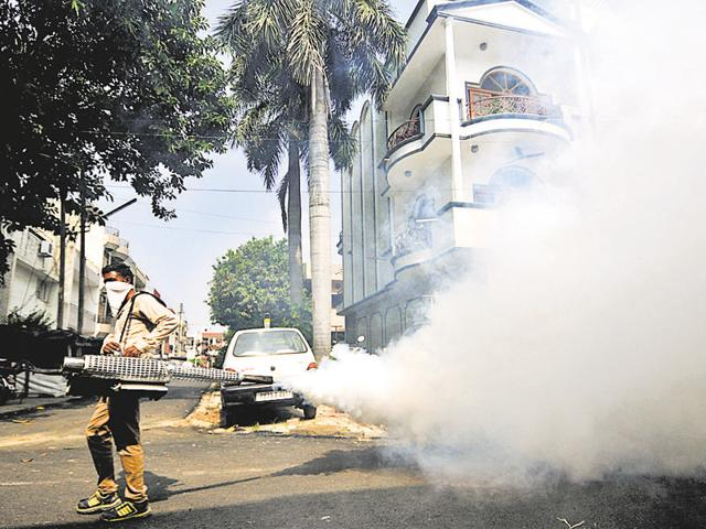 Fumigation is the only answer to keep the dengue mosquito, Aedes aegypti, at bay but it becomes ineffective if the process is not undertaken at regular intervals.