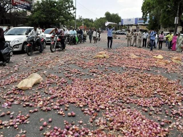 onion storage capacity,onions rotted,MP government