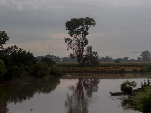 View of a place on the Lerma River where bodies were found in Jamay, Jalisco State. More corpses were found on the banks of the Lerma River, near Lake Chapalam raising the count to 13 bodies.