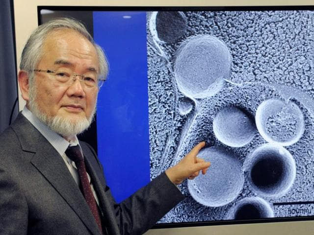 Yoshinori Ohsumi answers a phone call following a news that he won this year's Nobel Prize in medicine at his office in the Tokyo Institute of Technology campus in Yokohama, south of Tokyo.