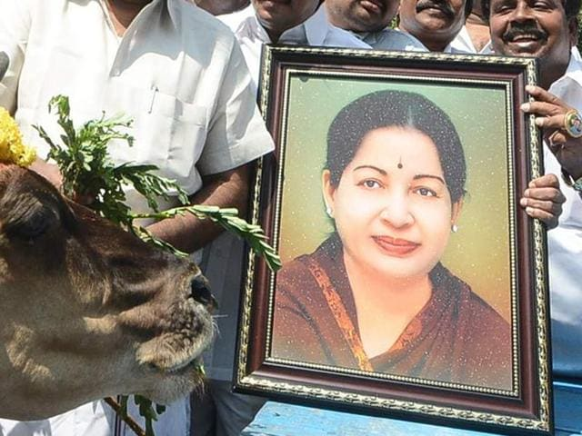 The AIADMK worker complained of chest pain amid rumours about Jayalaithaa's health condition and swooned.