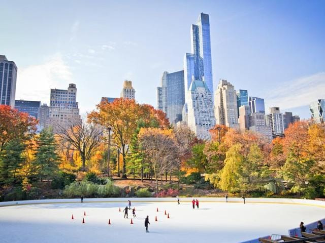 New York City's Central Park in winter.