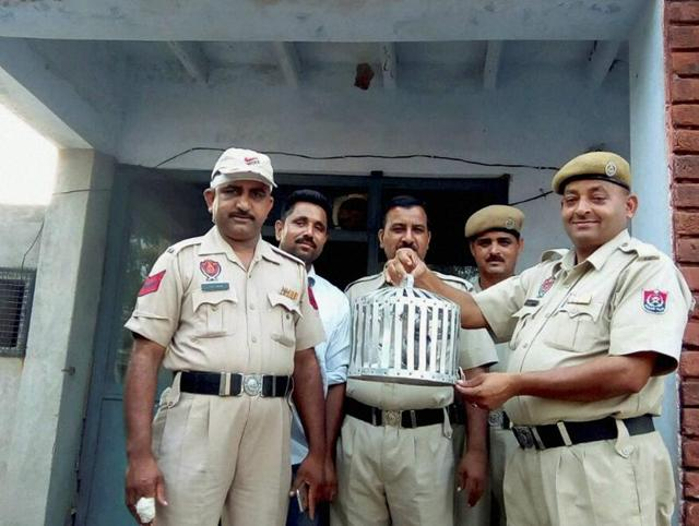 On October 2, a pigeon purportedly from Pakistan was found by Border Security Force (BSF) personnel at the Simbal post in Bamial sector in Pathankot.