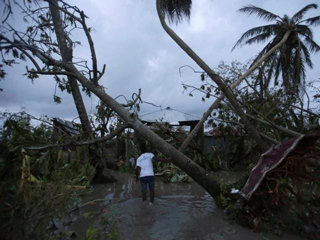 A man walks amongst trees damaged by Hurricane Matthew in Les Cayes, Haiti.