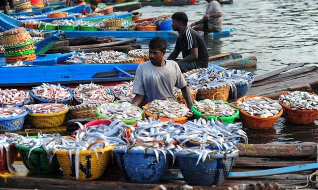 Sri Lankan Navy,Tamil Nadu fishermen,Rameswaran fishermen