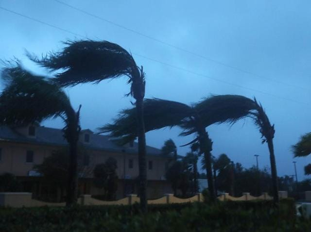 Palm trees sway due to Hurricane Matthew on Cocoa Beach, Florida.