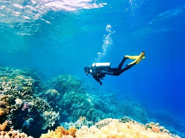Water Sports,Underwater Diving,Adventure Sports
