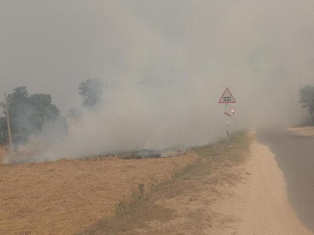 Burning of paddy straw has resulted in low visibility on roads adjacent to fields.