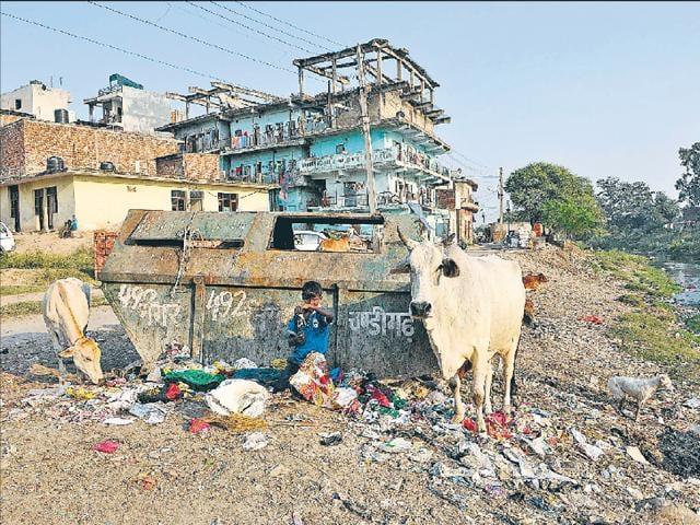 Refuse is an ever-present reality at Kajheri village.