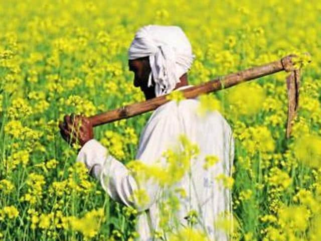 Punjab's small and marginal farmers and farm labourers need pensions, but even as these people are numerous and parties need their votes, they are too disorganised and fragmented to wring needed measures from the government.