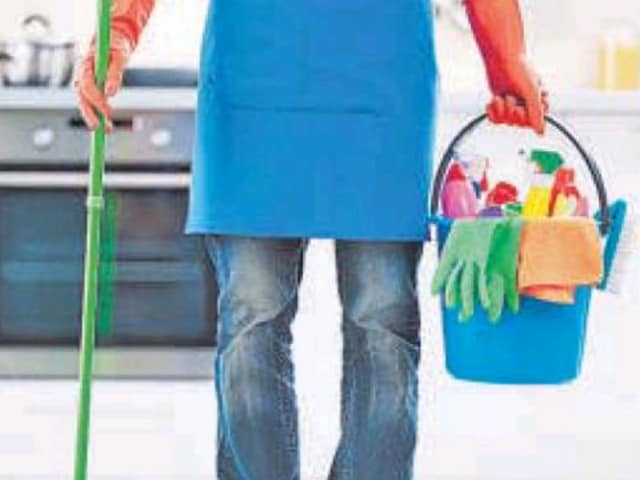 From bathroom cleaning to full-home cleaning — cobweb removal, fixtures cleaning, high-rise dusting, mopping, vacuuming, pest control, carpet cleaning and shampooing, curtain dusting, sofa cleaning, wall and ceiling cleaning — e-commerce startups are offering handymen for all cleaning services at your doorstep.
