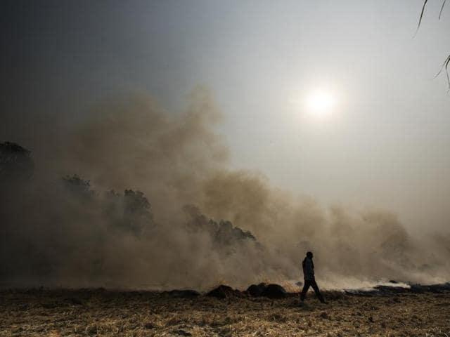Stubble at a farm in Kurukshetra, Haryana, set ablaze after harvest.(Ravi Choudhary/HT Photo)