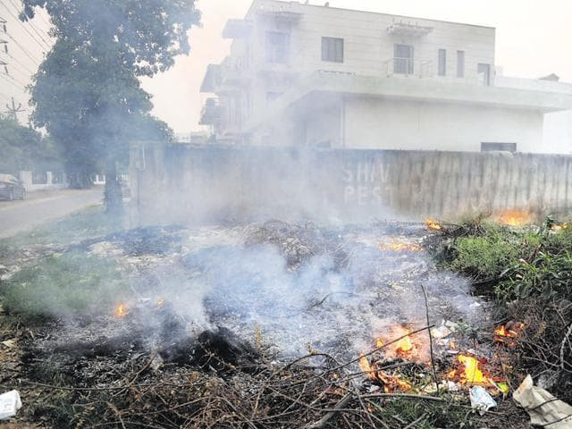 Waste being burnt in a vacant plot in Sector 40.