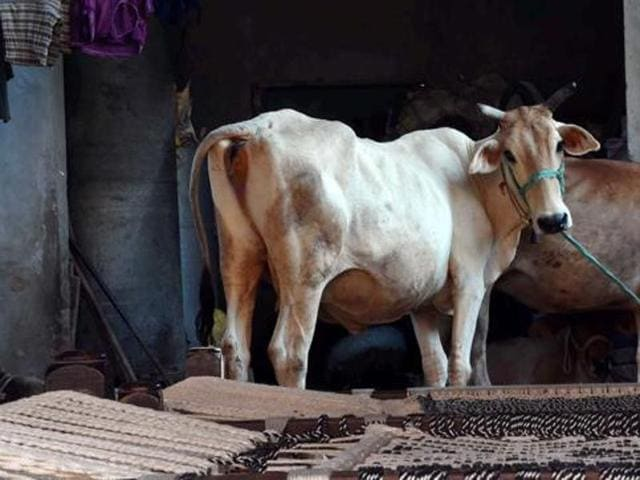 Cow smuggling to Bangladesh has been substantially curbed in the south Bengal districts of North2 4 Parganas, Nadia and Murshidabad.