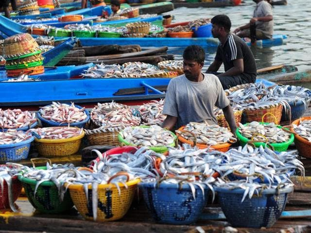 Indian fishermen unload baskets of fish from boats at a harbour in Chennai on June 5, 2016.