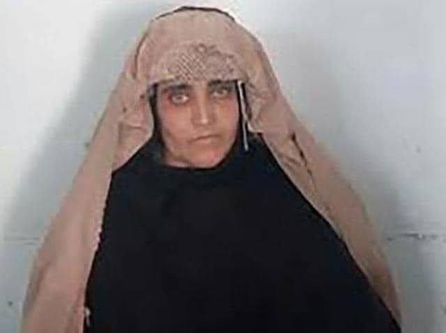 UN High Commissioner for Refugees,UNHCR,Sharbat Gula
