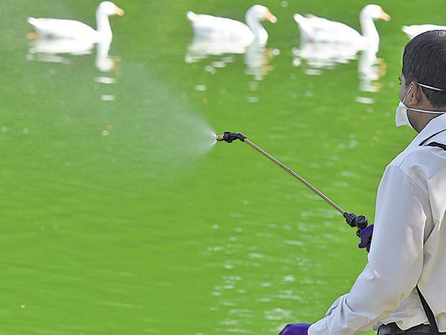 bird flu,delhi zoo,gopalrai