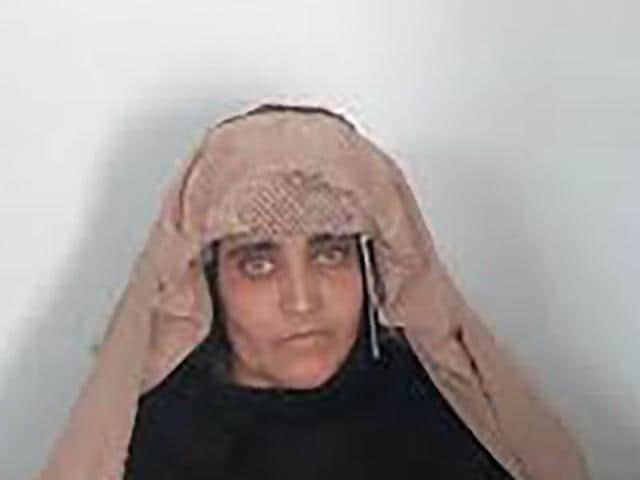 National Geographic Afghan girl,Sharbat Gula,Steve McCurry