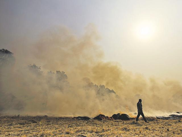 A government release said it reviewed the ambient air quality of the city on the eve of Diwali and found NASA satellite images of October 26 that show fires raging in the fields of Punjab and Haryana due to burning of agricultural residue.