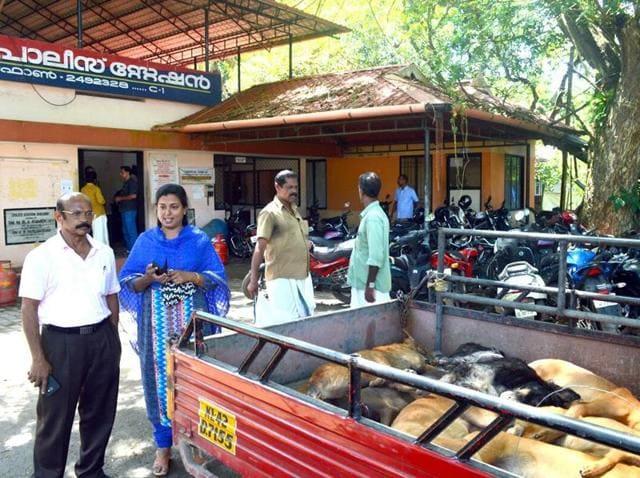 Kerala,Stray dogs,Animal cruelty