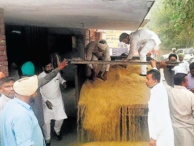 Farmers led by Youth Congress leaders dumping paddy outside the SDM's office at Gidderbaha on Tuesday.