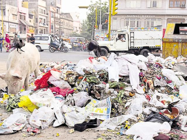 Garbage lies uncleared in Jaipur on Thursday.