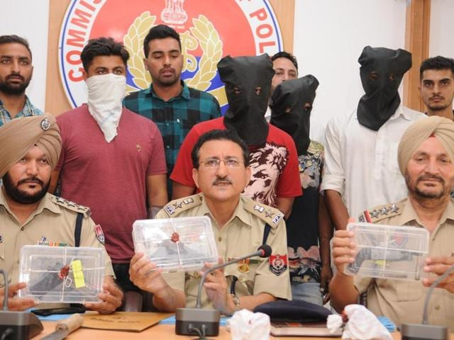 Police officials displaying recovered pistols during press conference in Jalandhar on Thursday.