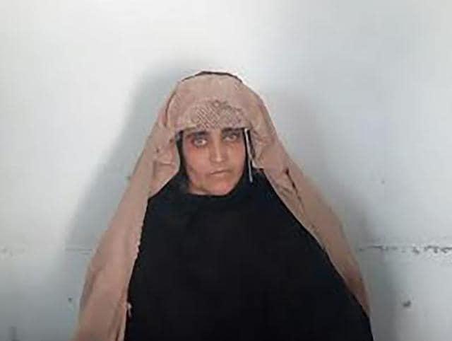 Afghan girl,Sharbat Gula,Afghan girl deportation