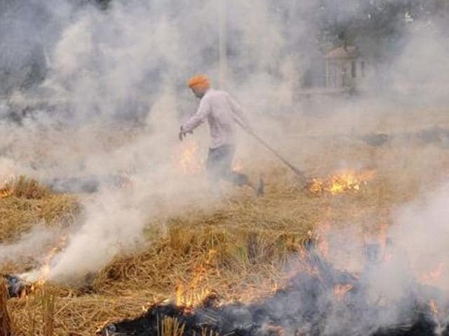 """""""It (smog) is not from Punjab, it has been emitted from your (Delhi's) vehicular traffic, coal-based power plants and burning of garbage. Please don't blame Punjab for your pollution,"""" Punjab agriculture minister Tota Singh told Union minister of state for environment Anil Madhav Dave in New Delhi on Monday."""
