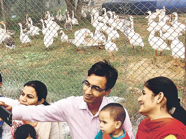 A family taking a selfie with ducks that have now been put behind an iron mesh after a bird flu threat in Rohtak on Sunday.