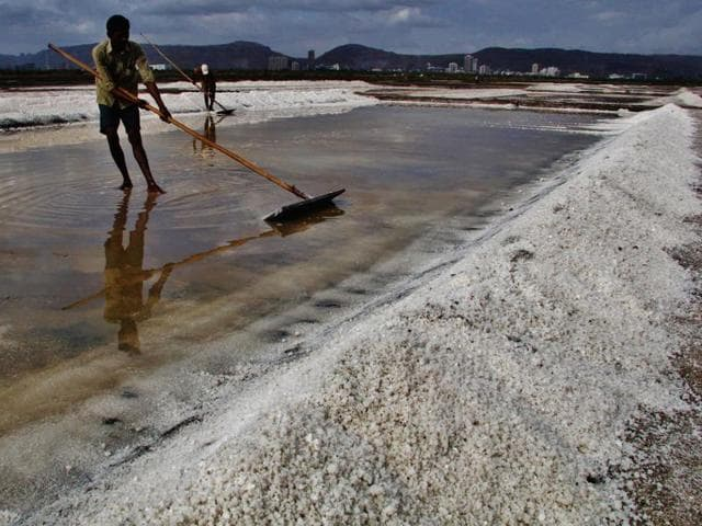 Rumours of salt shortage led to frenzy in various parts of the Uttar Pradesh.