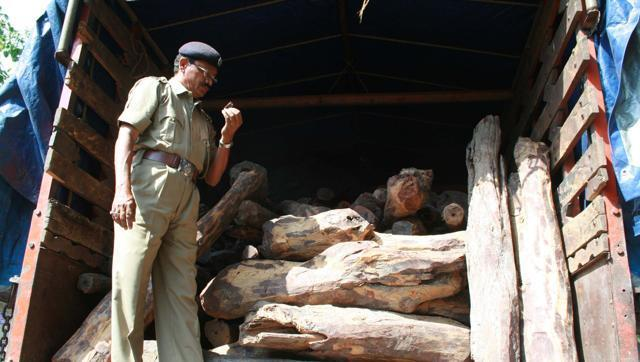 A school drop-out, Satam began his career as a customs agent for exports. He went on to become the richest red sandalwood smuggler in the country. Several cases of smuggling have been registered against him since 2000.