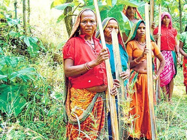Barwani tribals,Down's syndrome,Jackson State University