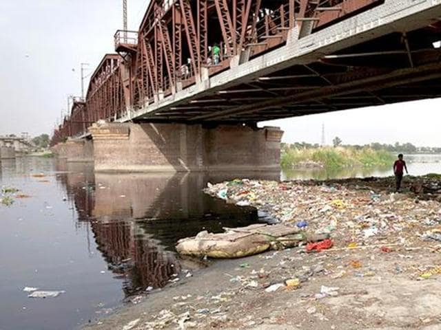 The banks of the river Yamuna in New Delhi are contaminated with pollutants, heavy metals and more, making it unfit for vegetation, the National Green Tribunal said.