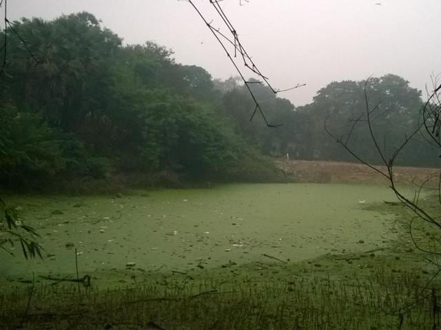 Environmentalists said the navy station had been dumping garbage, including non-biodegradable material, like thermocol and polystyrene packing from their establishment, some of which is still floating on the  surface of the pond identified as 'Nausena Baug Lake'.