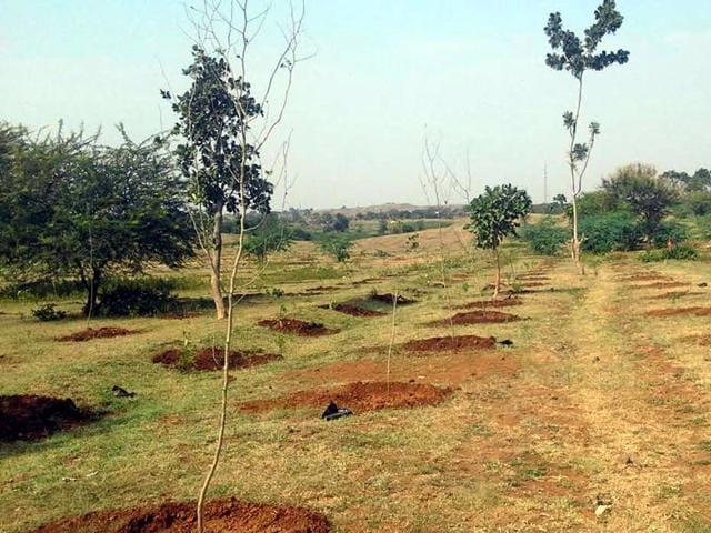 Land for biodiversity park in Barwani district.
