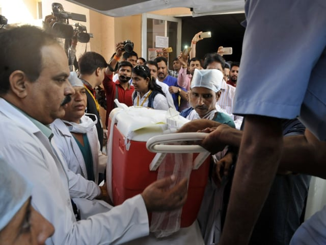 Five organs of Devkar, who was declared brain dead on Wednesday at Indore's MY Hospital, gave a new lease of life to over three people across the state.