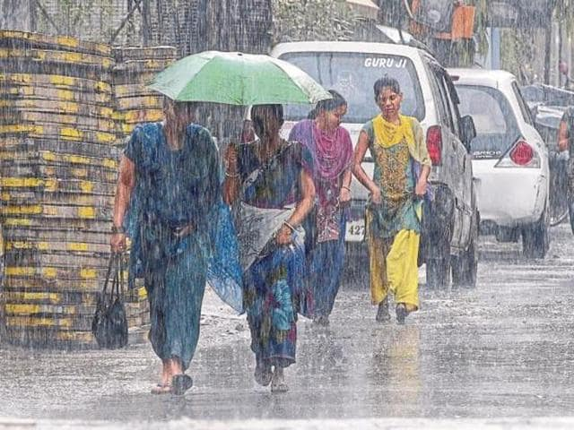 The Indian summer monsoon rainfall makes up 80% of the total annual rainfall in the country, and is important for agricultural productivity and the gross domestic product.