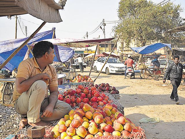 Supply of apples and oranges has been affected, but that of guavas is steady.(Sakib Ali/HT Photo)