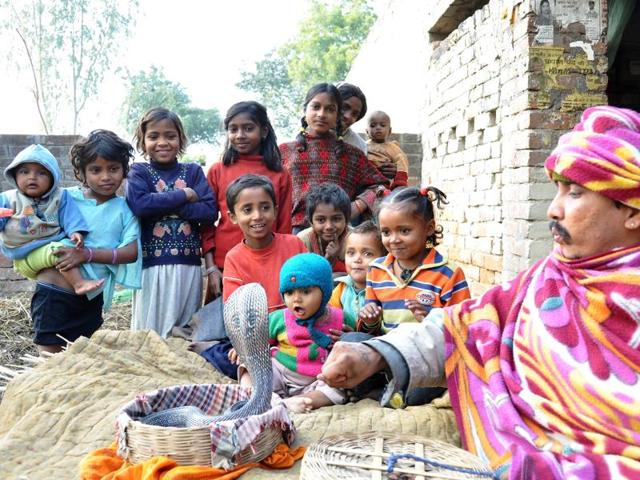The state government has planned to develop an exclusive village for snake charmers.